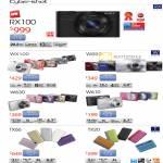 Cybershot Digital Cameras DSC RX100, WX100, W690, W610, W630, TX20, TX66